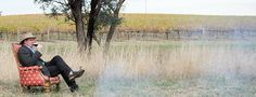 Orange Wine Region in New South Wales including producers and alternative varieties Orange Wine, New South, Wineries, South Wales, Alternative, Wine Cellars