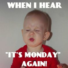 65 Funny Monday Memes to Help You Make It Through the Day - - Help cheer up someone who hates Mondays and let them know you share their pain. Here are the top 65 funny Monday memes to help you get started. Funny Monday Memes, Monday Humor Quotes, Monday Motivation Quotes, Funny Memes, Memes Humor, Work Motivation, Funny Drunk Texts, Drunk Humor, 9gag Funny