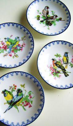 Bird Plates.