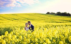 This rapeseed field in full bloom was the perfect location for intimate portaits of Ciara & Stuart on their wedding day in Bellingham Castle, Co. Louth, Ireland Bellingham Castle, Rapeseed Field, Wedding Photos, Wedding Day, Dublin, Ireland, Bloom, Wedding Photography, Outdoor
