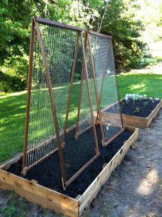 Trellises for beans/peas Allotment Gardening, Backyard Vegetable Gardens, Vegetable Garden Design, Urban Gardening, Garden Yard Ideas, Garden Beds, Garden Projects, Bean Trellis, Garden Trellis