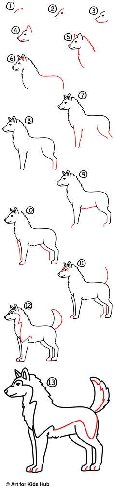 To Draw A Realistic Husky - Art For Kids Hub - How to draw a husky!How to draw a husky! Bird Drawings, Doodle Drawings, Easy Drawings, Animal Drawings, Drawing Lessons, Drawing Techniques, Drawing Tips, Art Lessons, Art For Kids Hub