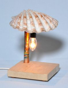 Oyster shell night light with curly maple base and colorized copper post