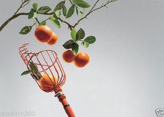Fresh Fruit Picker Basket Orange Peach Plum Apple | eBay