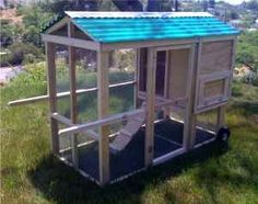 Great sized coop and run - Chicken Tractor too!