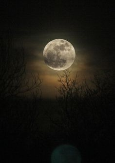 Super Moon in the Desert