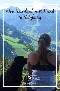 Ein Wanderurlaub mit Hund war schon lange unser Wunsch. Diesen haben wir uns im Herbst mit einem Hüttenurlaub in Großarl erfüllt. Wanderlust, Roadtrip, Mountains, Kind, Tricks, Nature, Movie Posters, Hotels, Outdoors