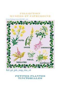 Grille de point de croix : Petites Plantes Tinctoriales