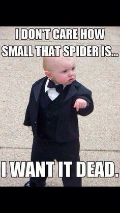 Yes!! Because I HATE spiders!! The way I see it is that they have about 4 too many legs, and that's not okay with me!!