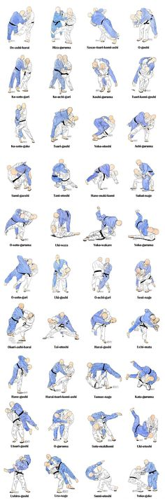Judo techniques to show my daughter