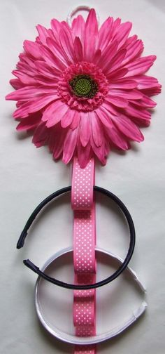Adorable and useful way to organize headbands and clips