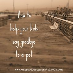 A great article written by a mother who helped her children say goodbye to their beloved pet they had all their growing up life. Wonderful insight for anyone who is looking for knowledge on how to help kids say goodbye to a pet.