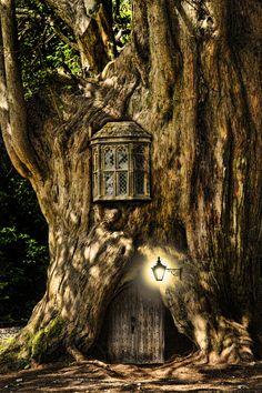 Сегодня на очереди обзор сказочных окошек. Напомню, мы начинали с дверей и обнаружили, что двери вполне самостоятельно могут создавать иллюзию обитаемого пространства, даже без собственно домиков. С окошками возможен тот же фокус! Вот, например, хотя это и фабричное искусство, но все равно — просто одно окошко, но всем очевидно, что в этом дереве кто-то живет: …