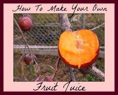 Hometalk | Fruit Preservation :: Kathie Lapcevic's clipboard on Hometalk