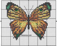Sarı Kelebek Pano