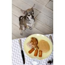 Tips for getting to your dog to quit stealing food