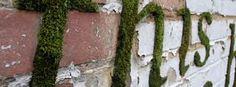 Intervenção urbana com musgo – Planeta Sustentável