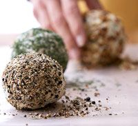 Dilled Onion Cheese Ball