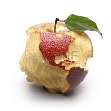 Resultado de imagen para cuadros de manzanas con sombra