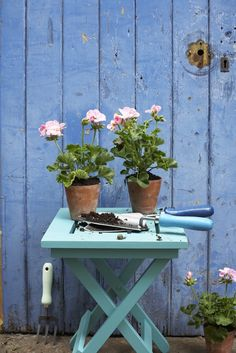 Paint old tool handles and doors with vibrant colours for a zingy look. Shot by Nick Pope