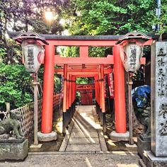 Ikenohata 3 Chome, Tokyo, Japan — by welcomeware. Ueno