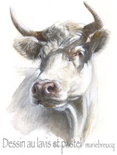 Animal Paintings, Animal Drawings, Art Drawings, Cow Painting, Figure Painting, Farm Animals, Animals And Pets, Art Pastel, Cow Canvas