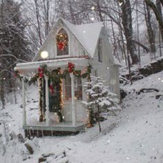 Alone in the forest with snow and books. (Ahhh! I want a little house SO BADLY!!)