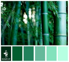 Bamboo 1: Teal, Blue, Green - Colour Inspiration Pallet