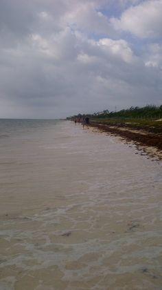 cloudy day Puerto Morelos Beach