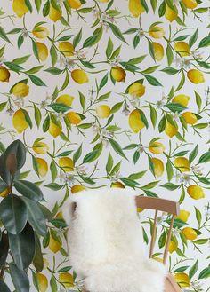 Wallpaper floral texture ideas for 2019 Trendy Wallpaper, Fabric Wallpaper, Wall Wallpaper, Floral Wallpapers, Wallpaper Ideas, Knockdown Texture, Floral Texture, Design Repeats, Kitchen Wallpaper