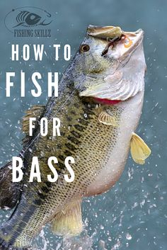 If you're thinking about learning how to fish for bass, then be sure to check out these bass fishing tips for beginners to get started. Tips Beginners Guide To Fishing For Bass: It's Easier Than You Think! Pike Fishing Tips, Walleye Fishing Tips, Catfish Fishing, Bass Fishing Lures, Best Fishing, Fly Fishing, Fishing Tackle, Fishing Rods, Fishing Tricks