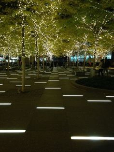 Liberty Plaza, long linear paving lights.