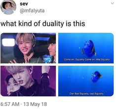 Nct memes cause why not¿ Nct 127, K Pop, Ntc Dream, Johnny Seo, Nct Life, Funny Kpop Memes, Funny Quotes, Jisung Nct, Lucas Nct