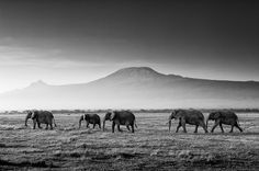 Tanzania ,Africa. Can't wait to be there over summer!!!!