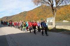 Nichts für schwache Nerven: 24-Stunden Wanderung am Donausteig  Mehr unter >>> http://a24.me/1rCPU78