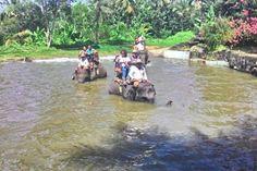 Enjoy activities with fun only in Bali #tripsbali.com #bali