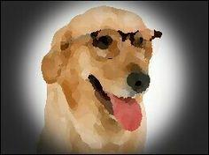 Doggy vlek