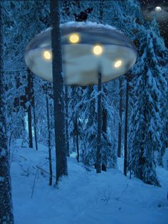 The UFO offers the intriguing image of a space ship coming in to land between the trees