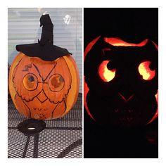 harrypott owl, halloween pumpkins, pumpkin 2013, owl pumpkin