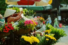 Beautiful street vendor - Hanoi City