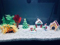 24 Best Aquarium Holiday Decor images | Aquarium, Aquarium ...