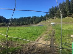 Small Farm, Big Tale: Sustainable Farming in the Bay Area | NRDC Moving To California, Northern California, Sustainable Farming, Sustainability, Mill Farm, Land Trust, Real Estate Prices, Farm Business, Green Valley