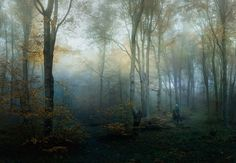 Bulgarie - Walk Photo by Veselin Atanasov — National Geographic Your Shot - Walk of the local forester in the misty forests of National Park - Central Balkan, Bulgaria.