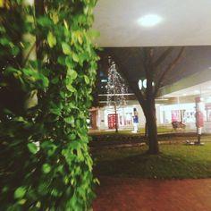 Utica Square 2