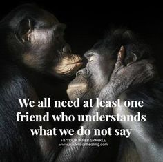 We all need at least one friend who understands what we do not say.