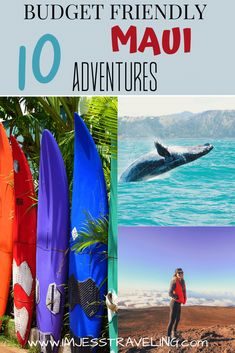 Maui is an expensive place but not everything has to cost an arm and a leg.  Here are 10 budget friendly adventures that you can only do in Hawaii!