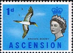 Postage Stamps Ascension 1963 Queen Elizabeth II Birds SG 70 Bird Fine Mint For Sale Take a look