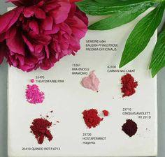Pioenroos » Colors of nature » Kremer Pigmente GmbH & Co. KG