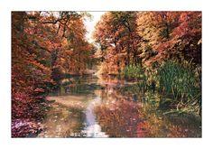 Dresden, Germany  Autumn by Torsten-Hufsky