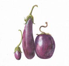 "Original Painting Watercolor ""Eggplant"" 7x7.5 , Watercolr Eggplant, vegetables, Home Decor , Kitchen Art, Eggplant Painting, Botanical art by TongmakStudio on Etsy"